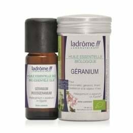 geranium-pelargonie