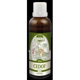 Cedof (T49)
