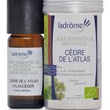Bio esenciální olej - CEDR ATLASKÝ 10 ml
