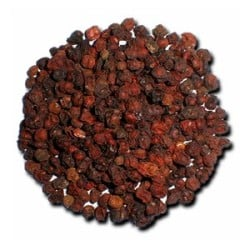 Schizandra čínská - sušený plod