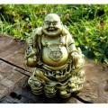 Buddha Wealthy (bohatství)