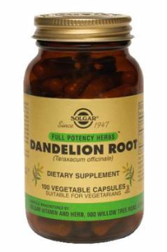 Kořen pampelišky - Dandelion root