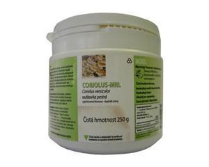 Coriolus versicolor - otkovka pestra - léčivá houba - léčivé houby
