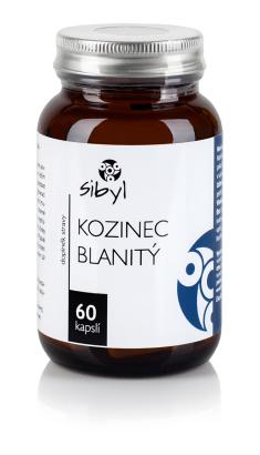 Kozinec_blanity