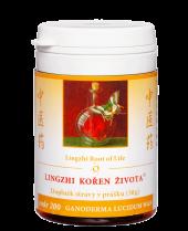 Lingzhi-koren-zivota