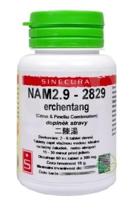NAM 2.9