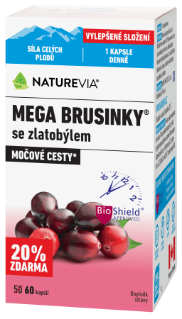 Swiss-mega-brusinky-zanet-mocovych-cest