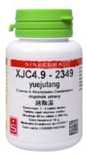 XJC 4.9 (yuejutang)